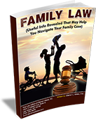 Attorney David Volman Family Law Book
